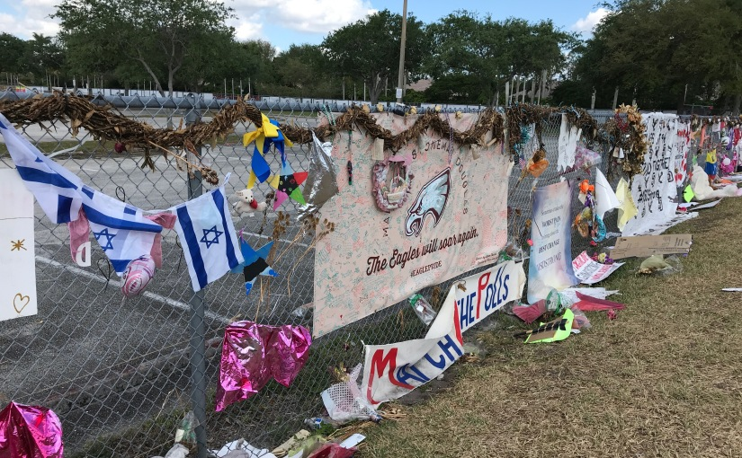 """Valentine's Day"" – #MSDStrong"